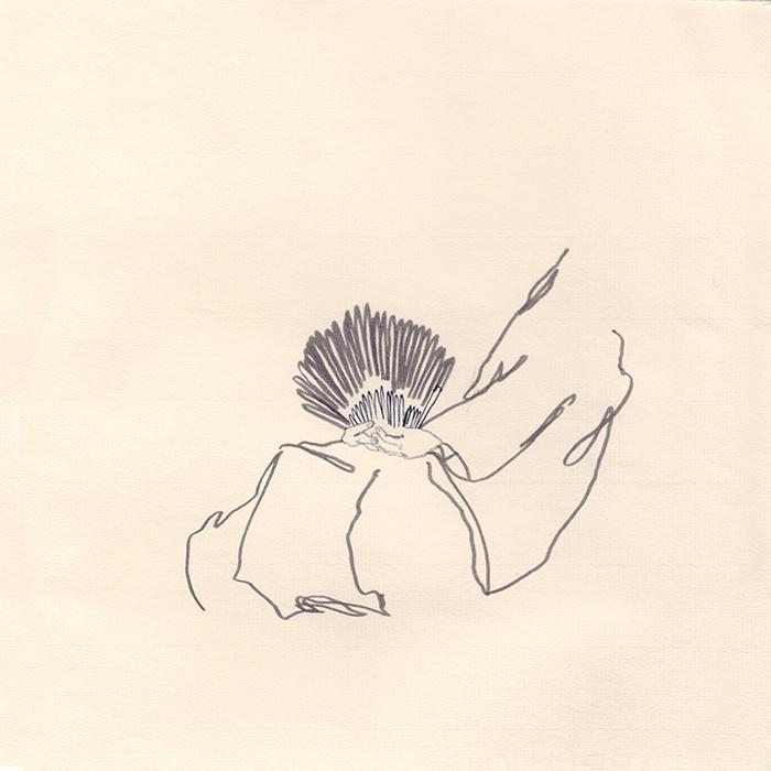025-AquilesHadjis